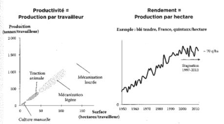 Productivité et rendement